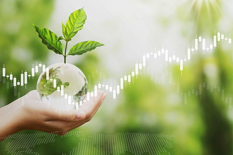 ต้นทุนของการรักษ์โลก